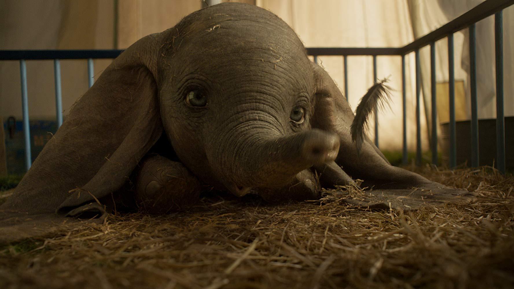 De orelhas renovadas, 'Dumbo' já voa sobre a liderança do box-office