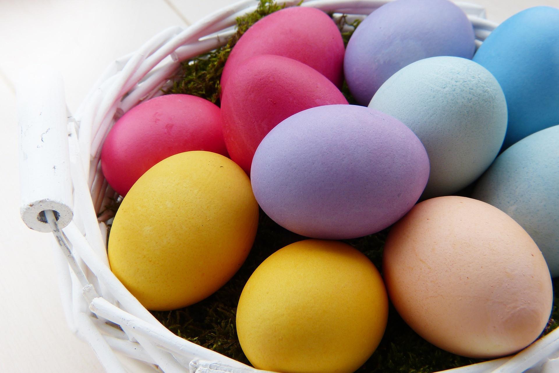 Caça aos ovos da Páscoa no Palácio das Cardosas