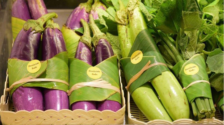 Substituir sacos de plástico por folhas de bananeira? Sim, já acontece