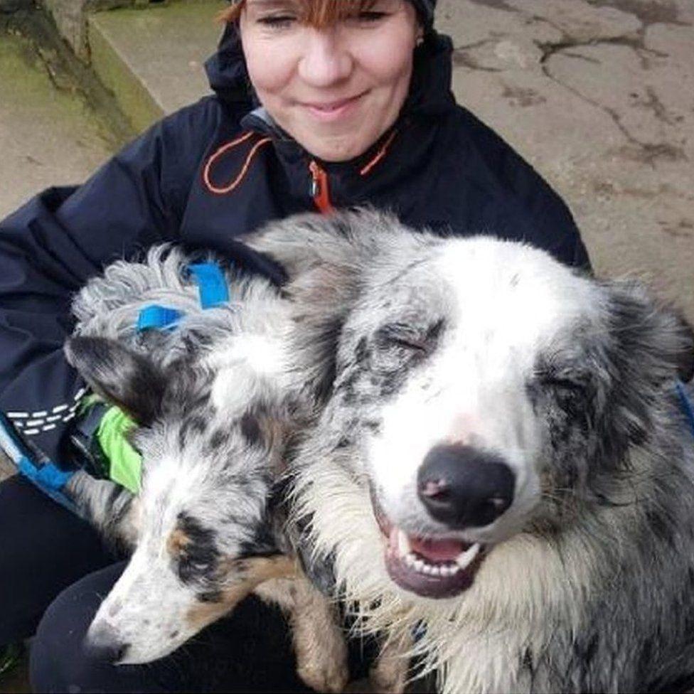 Mulher partiu a pena a correr num terreno isolado. Foi salva pelos cães