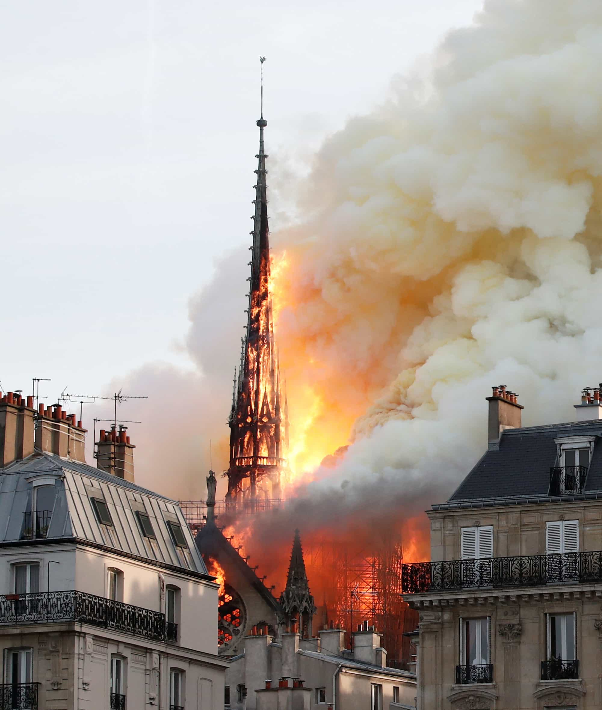 Famosos portugueses emocionados com incêndio na Catedral de Notre-Dame