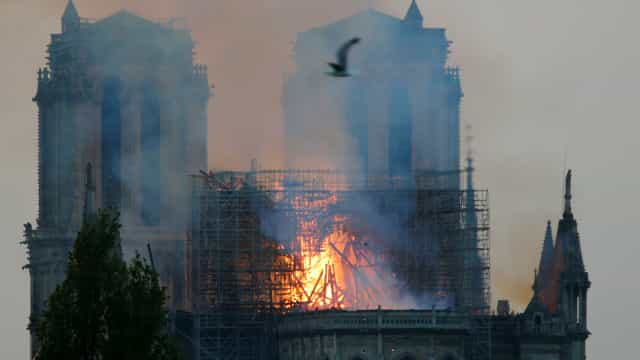 A desolação de Notre-Dame. Um fogo que lavrou sobre 850 anos de História