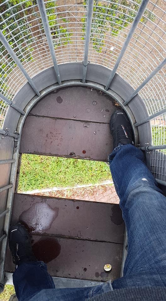 Zoo de Lisboa: Parte do piso de cabine de teleférico caiu durante viagem
