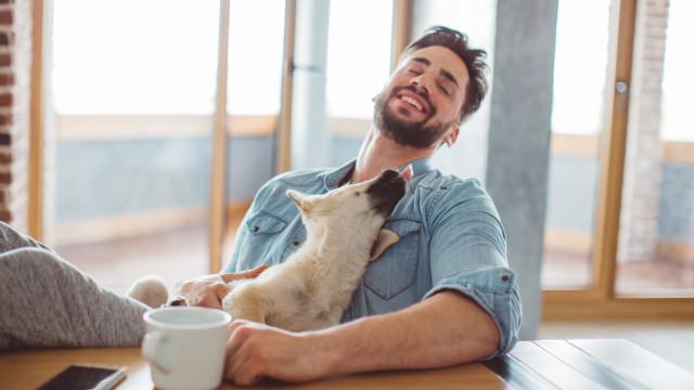 Pesquisa revela que homens com barba têm mais germes que cães