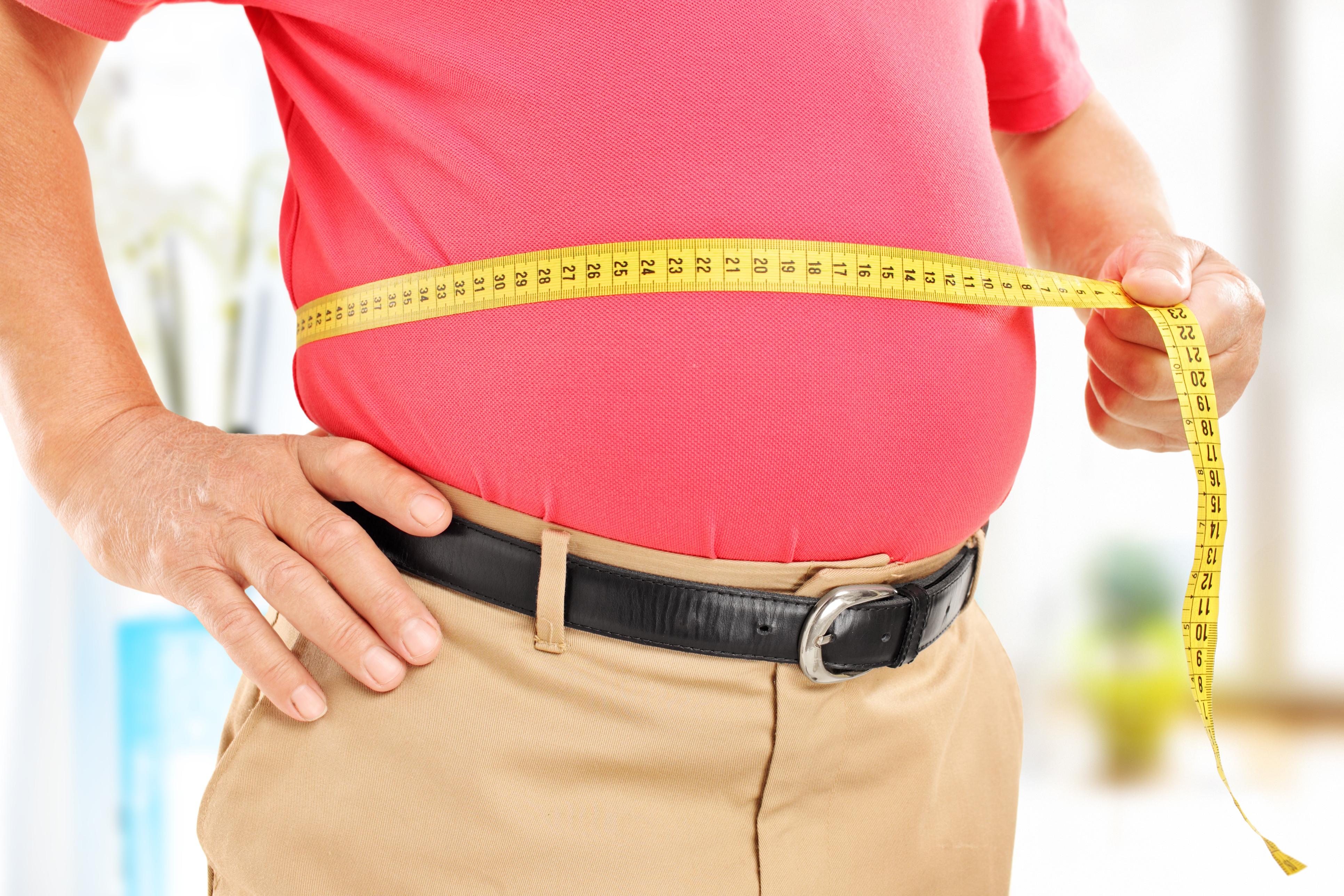 Cianobactérias podem vir a ser utilizadas no tratamento da obesidade