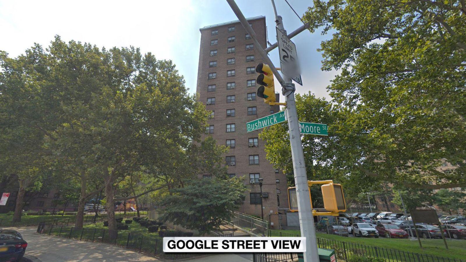 Caça ao homem em Nova Iorque. Jovem mutilada com criança no apartamento
