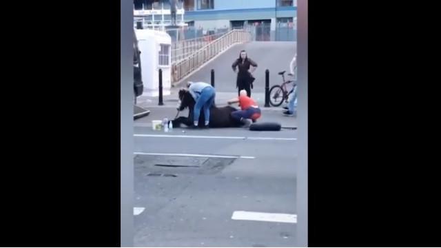 Dois detidos após égua que puxava carruagem colapsar em centro de cidade