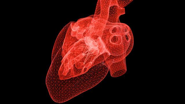 Cientistas imprimem primeiro coração 3D com tecido humano