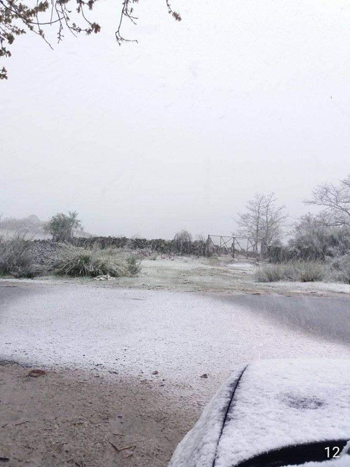 Neve está a pintar de branco o Interior do país. Veja as imagens
